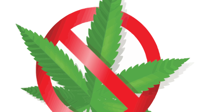 No alla cannabis